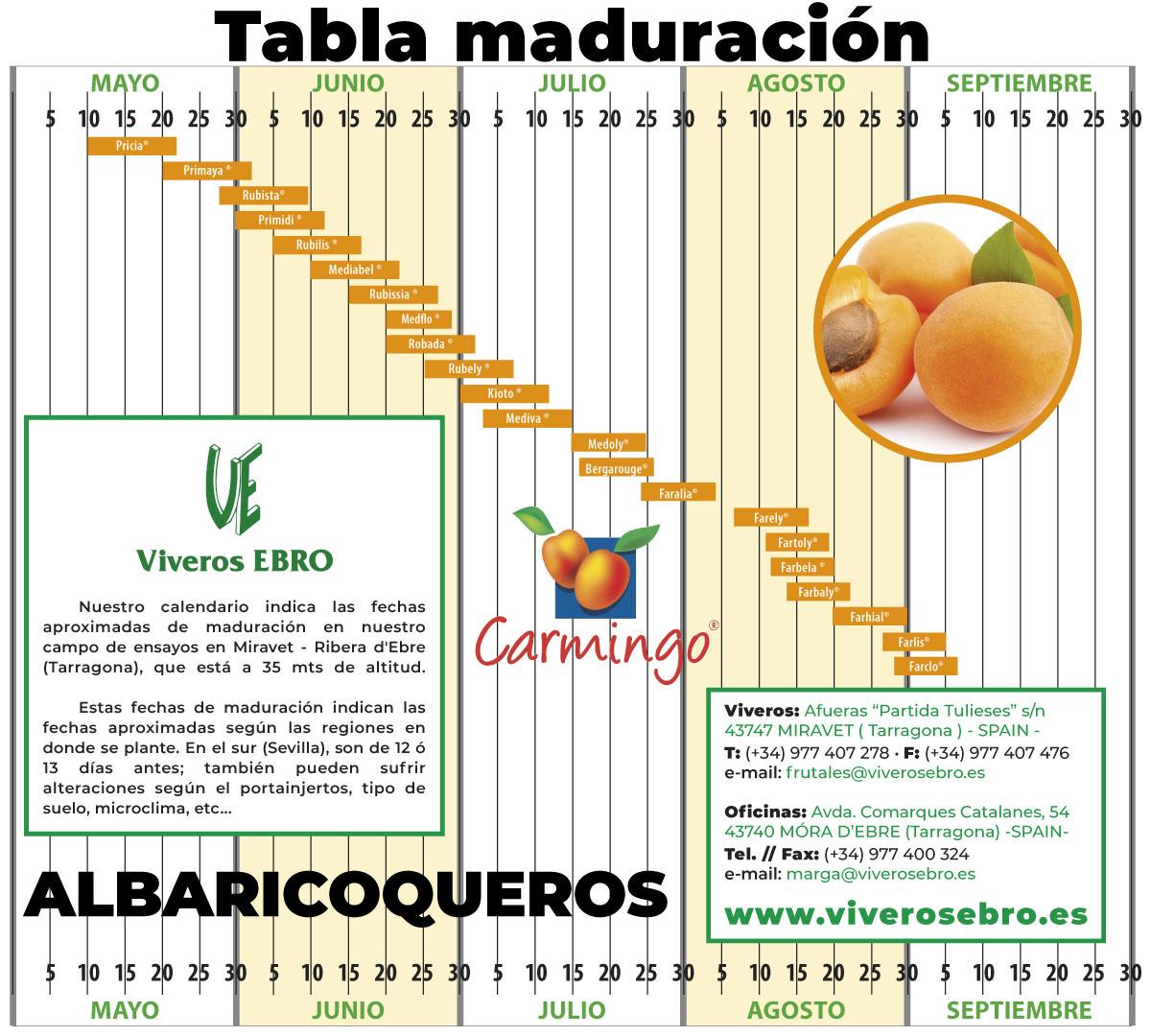 Cuadro Maduracion Albaricoqueros 2021