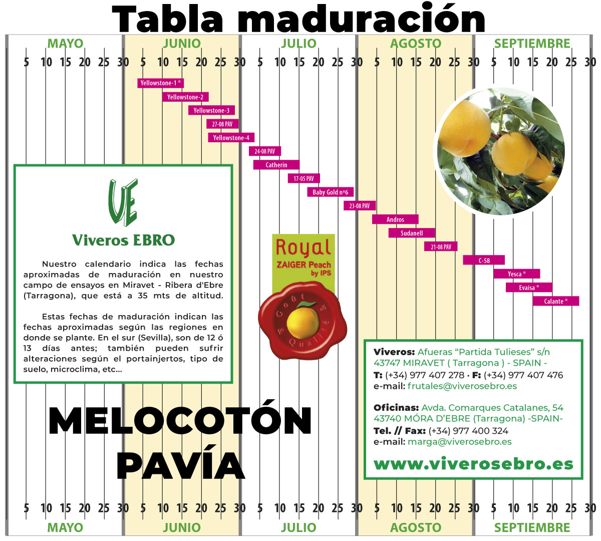 Cuadro Maduracion Melocoton PAVIA 2021