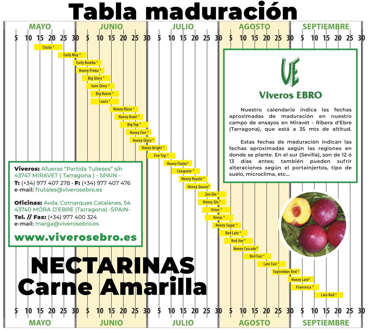 Cuadro Maduracion Nectarina Amarilla 2021
