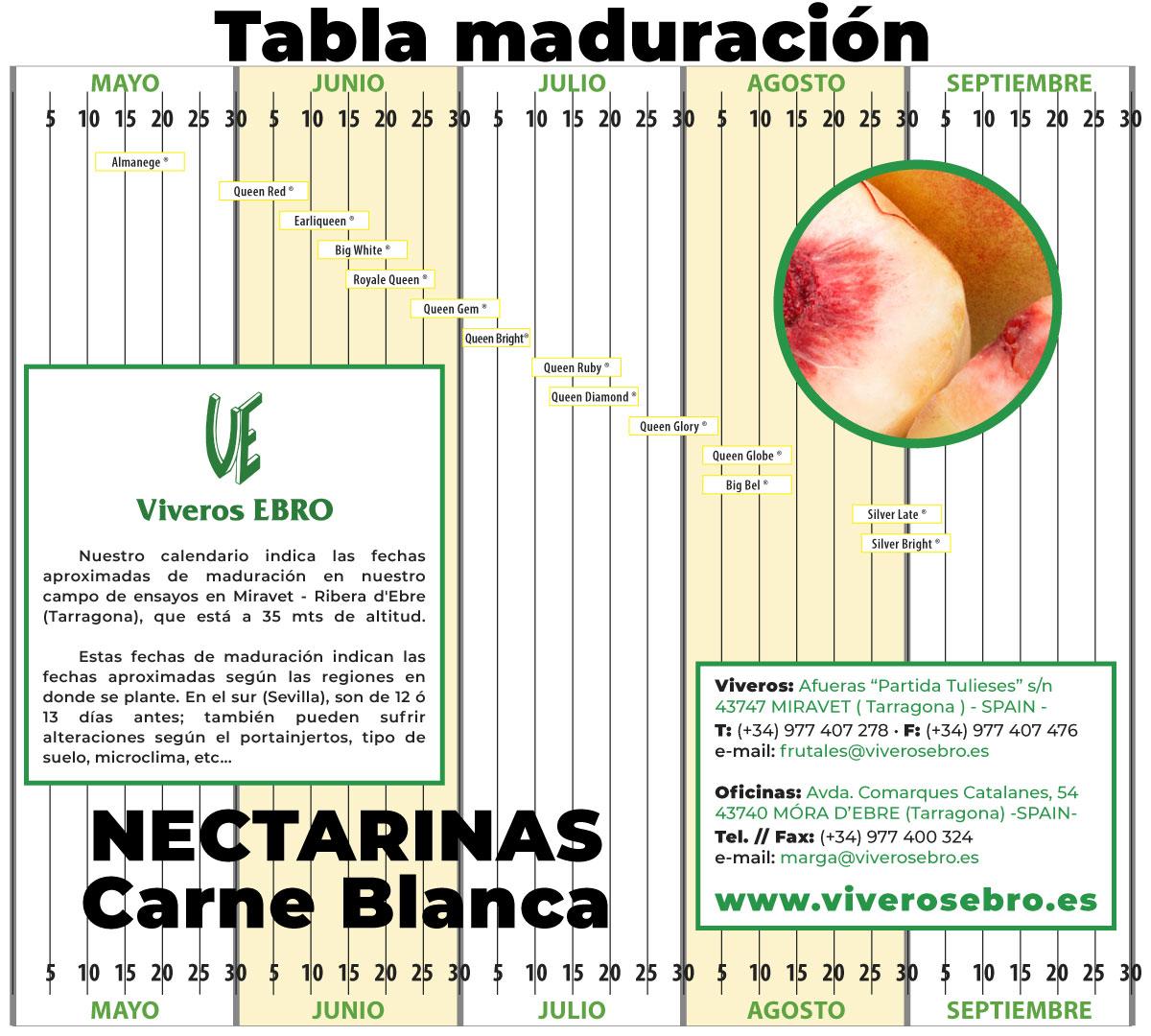 Cuadro Maduracion Nectarina Blanca 2021