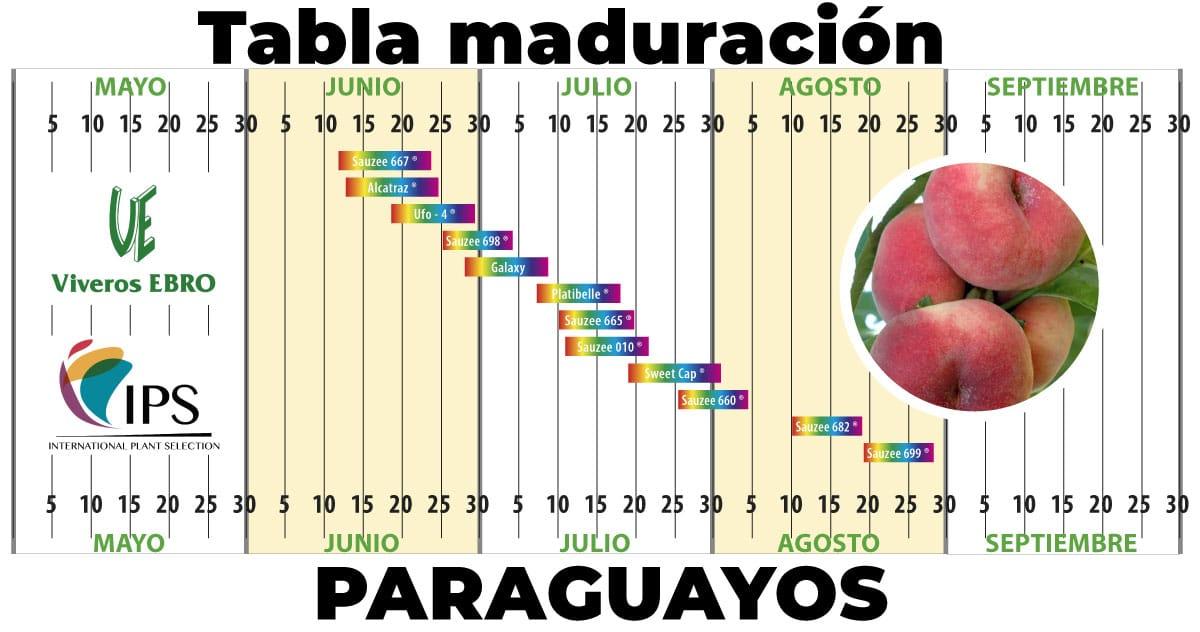 Cuadro Maduracion Paraguayos 2021