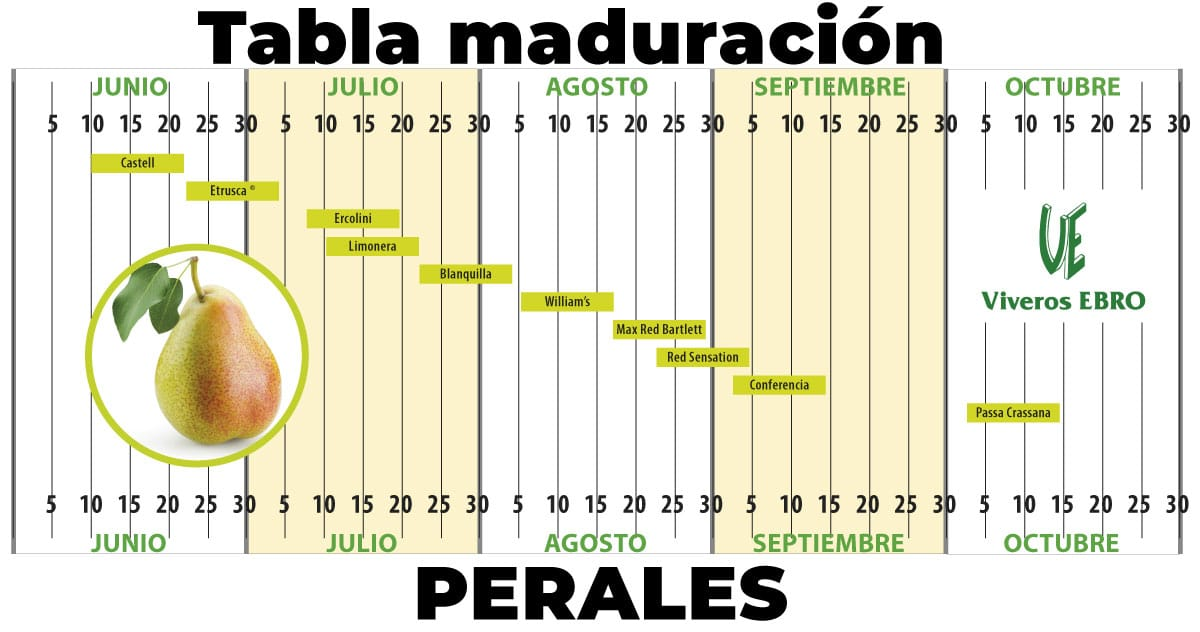 Cuadro Maduracion Perales 2021
