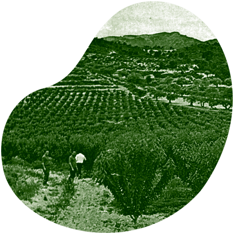 Historia Viveros Ebro