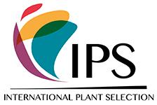 IPS Selection
